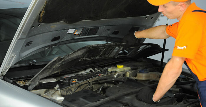 VW PASSAT 2001 Βάση Αμορτισέρ: εγχειρίδιο αντικατάστασης βήμα προς βήμα