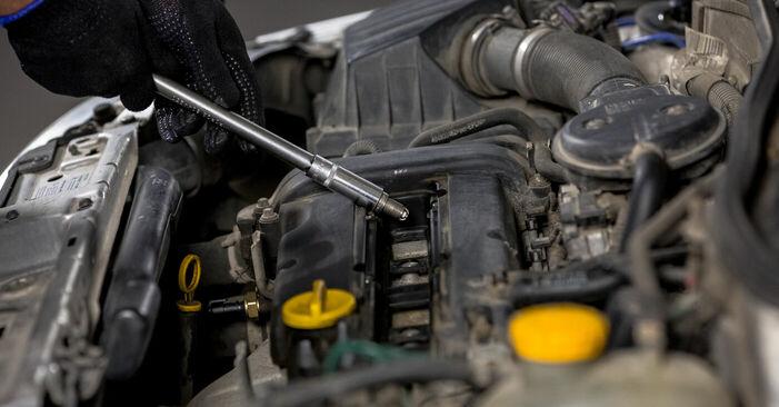 Substituindo Vela de Ignição em Opel Corsa C 2000 1.2 (F08, F68) por si mesmo