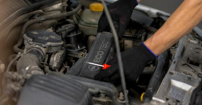 Substituição de Opel Corsa C 1.0 (F08, F68) 2002 Vela de Ignição: manuais gratuitos de oficina