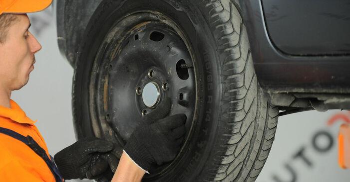 Polo 9n 1.2 12V 2003 Radlager austauschen: Unentgeltliche Reparatur-Tutorials