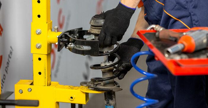 Schritt-für-Schritt-Anleitung zum selbstständigen Wechsel von Opel Corsa C 2003 1.7 DTI (F08, F68) Domlager