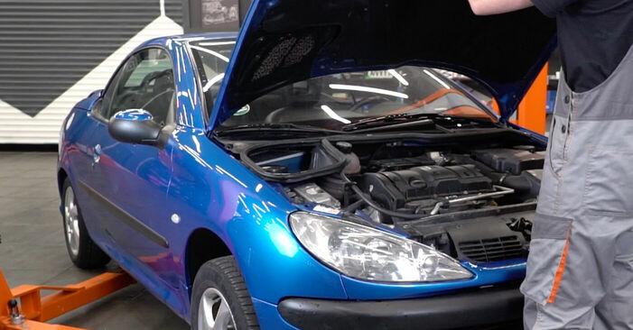 Comment changer Filtre à Huile sur Peugeot 206 cc 2d 1998 - Manuels PDF et vidéo gratuits