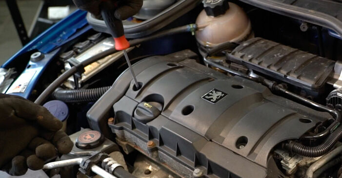Peugeot 206 cc 2d 2.0 S16 2000 Bougies d'Allumage remplacement : manuels d'atelier gratuits