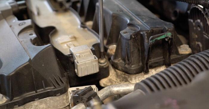 À quel point est-il difficile de le faire soi-même : télécharger le guide illustré pour le changement de Bougies d'Allumage sur Peugeot 206 cc 2d 1.6 HDi 110 2004