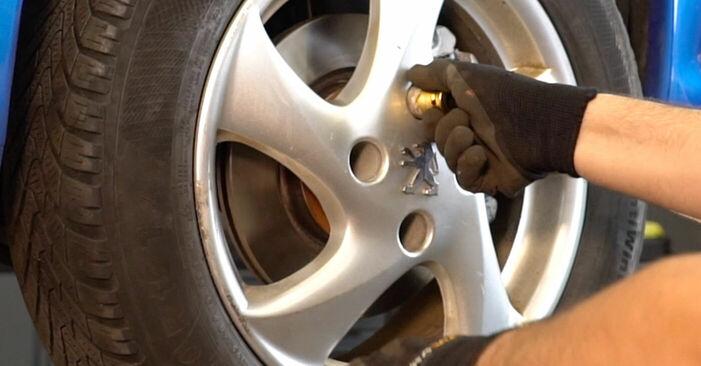 Schritt-für-Schritt-Anleitung zum selbstständigen Wechsel von Peugeot 206 cc 2d 2004 1.6 16V Stoßdämpfer