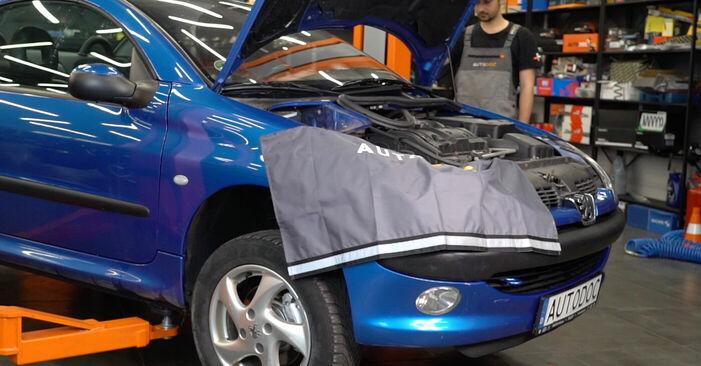 Querlenker Peugeot 206 cc 2d 1.6 HDi 110 2000 wechseln: Kostenlose Reparaturhandbücher