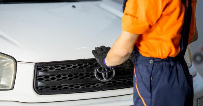 Steg-för-steg-rekommendationer för att byta Toyota Rav4 II 2001 2.4 4WD Fjädrar på egen hand