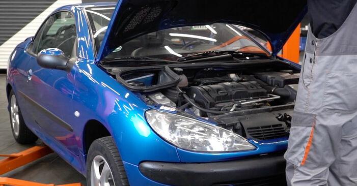 Wie Keilrippenriemen Peugeot 206 cc 2d 1.6 16V 1998 tauschen - Kostenlose PDF- und Videoanleitungen