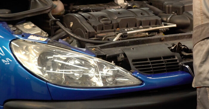 Keilrippenriemen Ihres Peugeot 206 cc 2d 1.6 16V 2006 selbst Wechsel - Gratis Tutorial