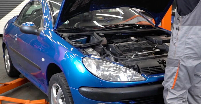 Wie Luftfilter Peugeot 206 cc 2d 1.6 16V 1998 tauschen - Kostenlose PDF- und Videoanleitungen