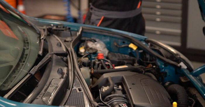 Wie Zündkerzen Renault Kangoo kc01 D 65 1.9 1997 tauschen - Kostenlose PDF- und Videoanleitungen
