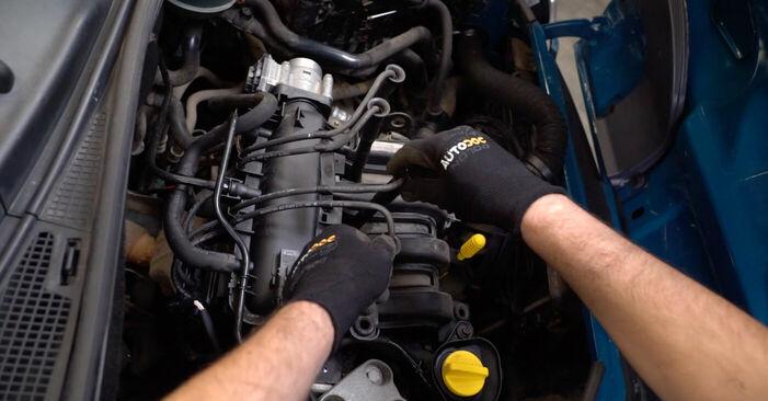 Schritt-für-Schritt-Anleitung zum selbstständigen Wechsel von Renault Kangoo kc01 2010 1.2 16V Zündkerzen