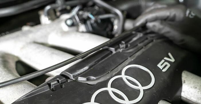 Zündkerzen Audi A3 8l1 1.6 1998 wechseln: Kostenlose Reparaturhandbücher