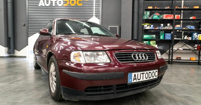 La sostituzione di Ammortizzatori su Audi A3 8l1 1996 non sarà un problema se segui questa guida illustrata passo-passo