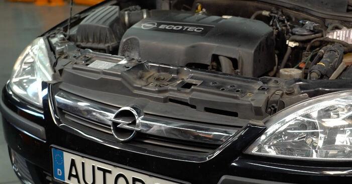 Wie Innenraumfilter Opel Corsa C 1.2 (F08, F68) 2000 tauschen - Kostenlose PDF- und Videoanleitungen