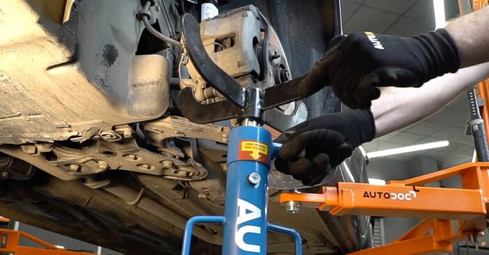 Step-by-step recommendations for DIY replacement FIAT BRAVO II (198) 2019 1.4 LPG Springs