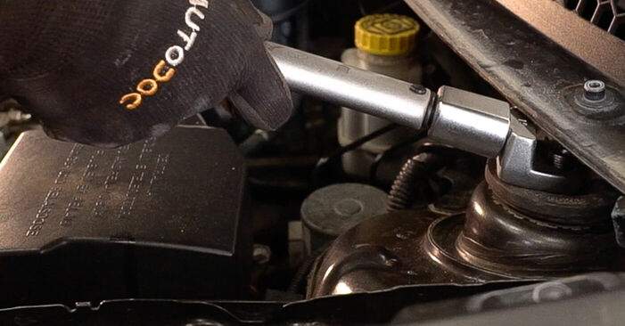 Changing Springs on FIAT BRAVO II (198) 1.4 T-Jet 2009 by yourself
