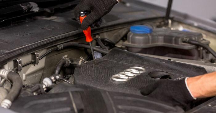 Pakāpeniski ieteikumi patstāvīgai Audi A4 b6 2003 1.6 Aizdedzes svece nomaiņai