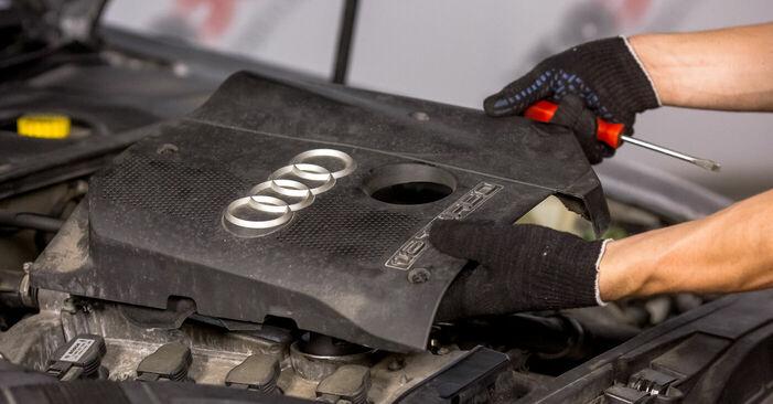 Audi A4 b6 2.0 2002 Aizdedzes svece nomaiņa: bezmaksas remonta rokasgrāmatas