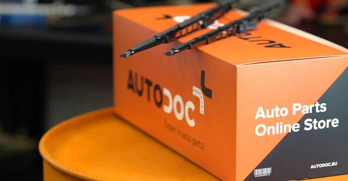 Wie Scheibenwischer Fiat Doblo Cargo 1.9 JTD 2000 tauschen - Kostenlose PDF- und Videoanleitungen