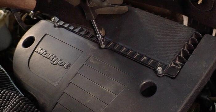 Luftfilter Ihres Fiat Doblo Cargo 1.6 16V 2009 selbst Wechsel - Gratis Tutorial