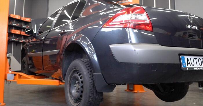 Schimbare RENAULT MEGANE II Saloon (LM0/1_) 1.9 dCi 2003 Arc spirala: manualele de atelier gratuite