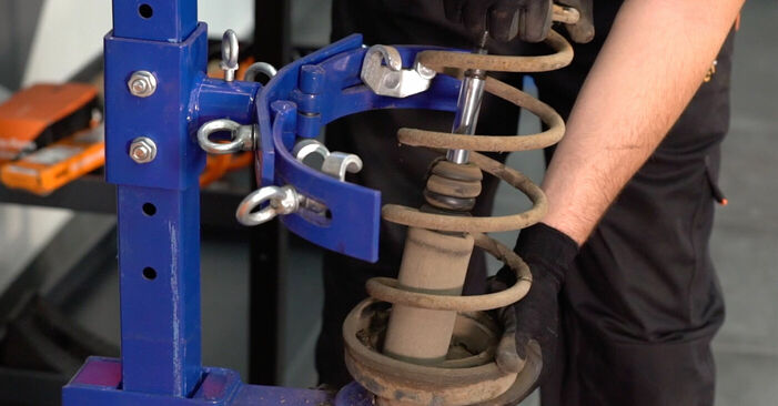 How to remove RENAULT KANGOO 1.2 16V 2001 Springs - online easy-to-follow instructions