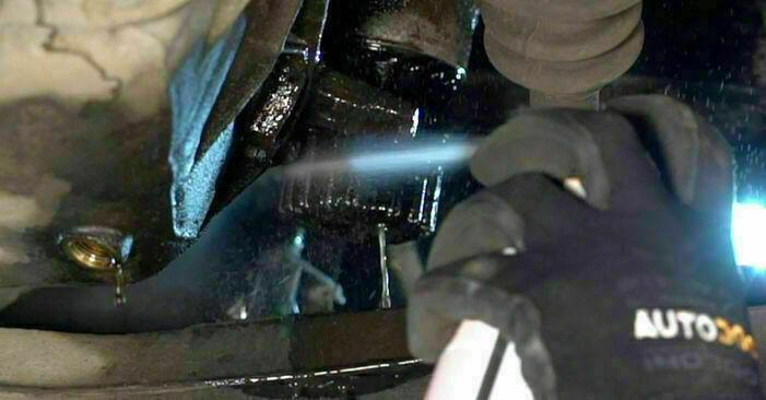 Wymień samodzielnie Filtr oleju w Renault Clio 2 2008 1.2
