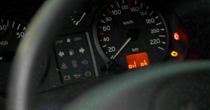Zalecenia krok po kroku dotyczące samodzielnej wymiany Renault Clio 2 2011 1.4 Filtr oleju