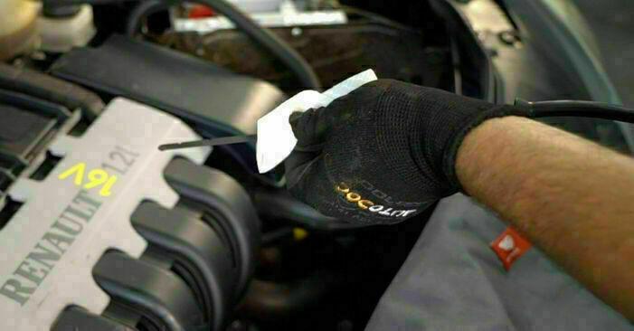 Filtr oleju w RENAULT CLIO II (BB0/1/2_, CB0/1/2_) 1.5 dCi 2012 samodzielna wymiana - poradnik online