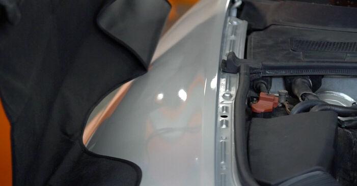 Zweckdienliche Tipps zum Austausch von Stoßdämpfer beim AUDI A6 (4F2, C6) 2.4 2010