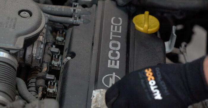 Αντικαθιστώντας μόνοι σας Πολλαπλασιαστής στο Opel Astra g f48 2008 1.6 16V (F08, F48)