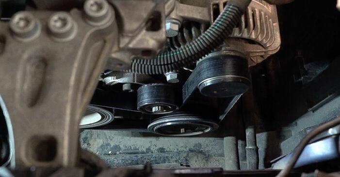 Ako dlho trvá výmena: Klinový rebrovaný remen na aute Peugeot 208 1 2020 – informačný PDF návod
