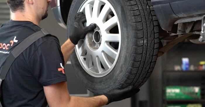 Wie schmierig ist es, selber zu reparieren: Bremssattel beim Audi A3 8l1 1.9 TDI 2002 wechseln – Downloaden Sie sich Bildanleitungen