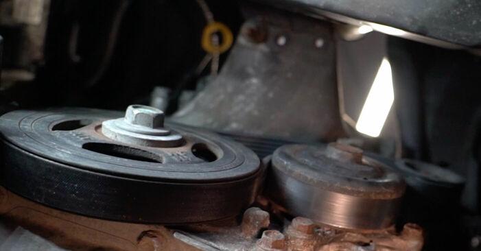 Schritt-für-Schritt-Anleitung zum selbstständigen Wechsel von Toyota Aygo ab1 2008 1.4 HDi Keilrippenriemen