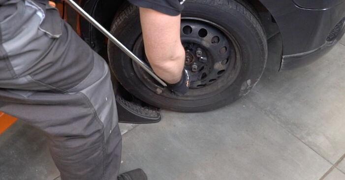 Keilrippenriemen Toyota Aygo ab1 1.0 GPL (KGB10_) 2007 wechseln: Kostenlose Reparaturhandbücher