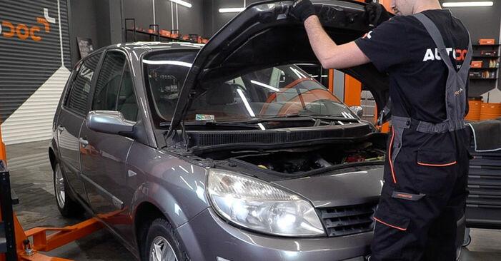 Wie man Innenraumfilter beim Renault Scenic 2 2003 wechselt - Gratis PDF- und Video-Tutorials