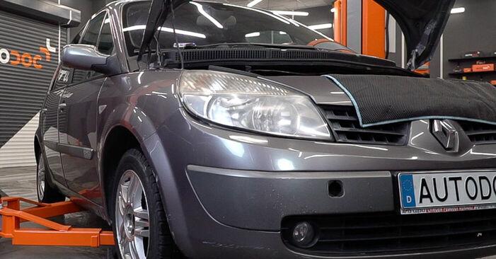 Kaip pakeisti Kuro filtras la Renault Scenic 2 2003 - nemokamos PDF ir vaizdo pamokos