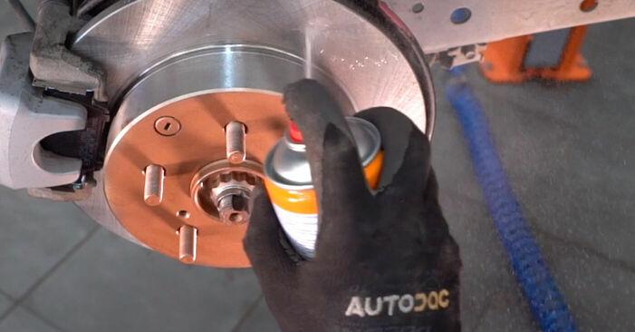 Schritt-für-Schritt-Anleitung zum selbstständigen Wechsel von Toyota RAV4 III 2009 2.0 (ZSA35_) Querlenker