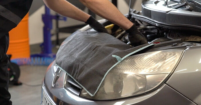 How to replace RENAULT SCÉNIC II (JM0/1_) 1.9 dCi 2004 Springs - step-by-step manuals and video guides