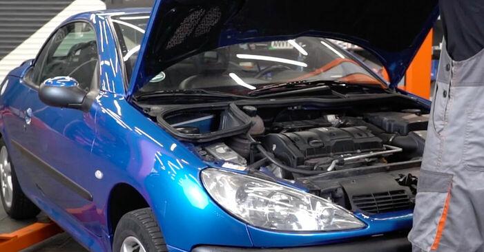 Jak vyměnit Kabinovy filtr na Peugeot 206 cc 2d 1998 - bezplatné PDF a video návody