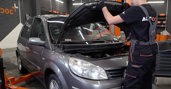 How to change Brake Discs on Renault Scenic 2 2003 - free PDF and video manuals