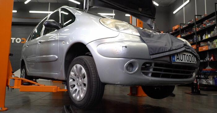 Citroen Xsara Picasso 1.6 HDi 1999 Draagarm remplaceren: kosteloze garagehandleidingen