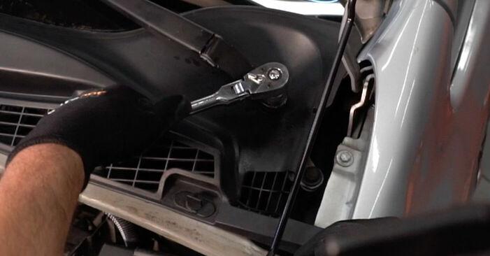 Zamenjajte Blazilnik na CITROËN XSARA PICASSO (N68) 1.6 2002 sami