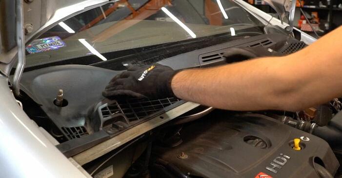 Kako zamenjati Blazilnik na CITROËN XSARA PICASSO (N68) 2011 - nasveti in triki
