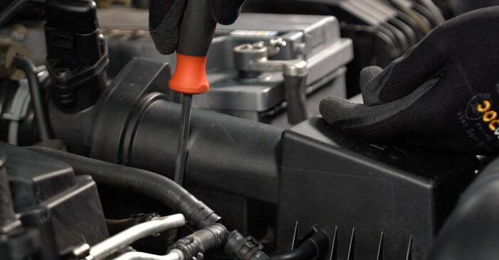 Touran 1t1 1t2 2.0 TDI 16V 2005 Zracni filter zamenjava: brezplačni priročnik delavnice