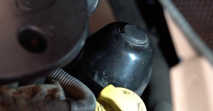 Ölfilter am FIAT DOBLO Cargo (223) 1.9 JTD Multijet 2006 wechseln – Laden Sie sich PDF-Handbücher und Videoanleitungen herunter