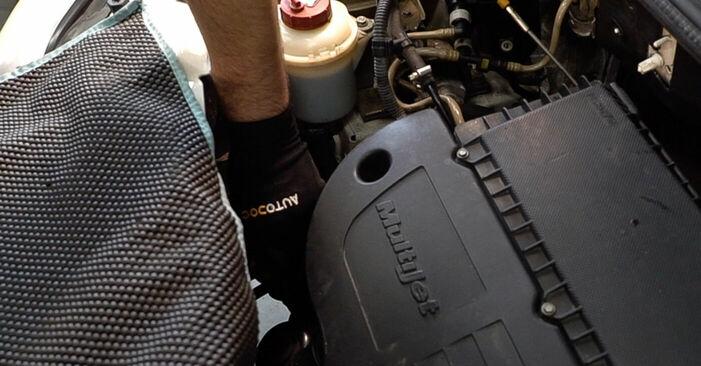 Ölfilter Fiat Doblo Cargo 1.9 D 2003 wechseln: Kostenlose Reparaturhandbücher