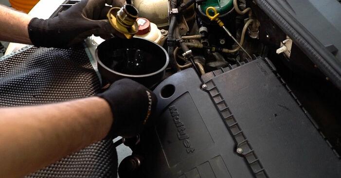 Austauschen Anleitung Ölfilter am Fiat Doblo Cargo 2011 1.9 JTD selbst