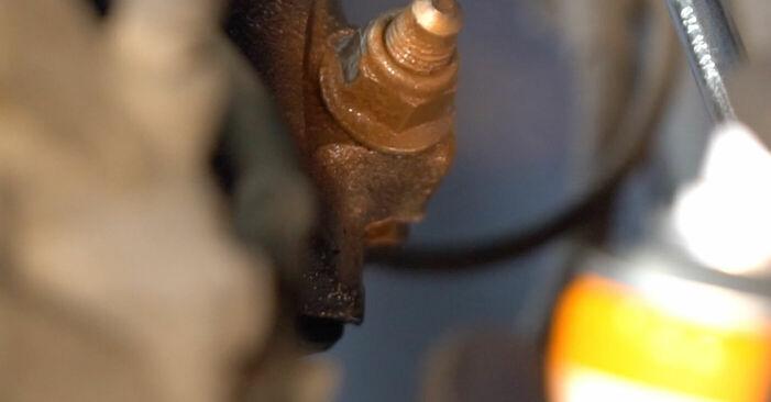 Hinweise des Automechanikers zum Wechseln von VW TOURAN (1T1, 1T2) 2.0 TDI 2009 Federn
